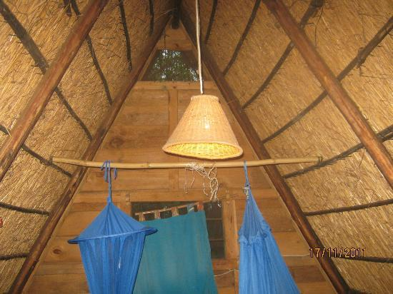Mabuya Camp: A PHOTO OF THE INNER ROOF OF A ROOM AT MABUYA CAP