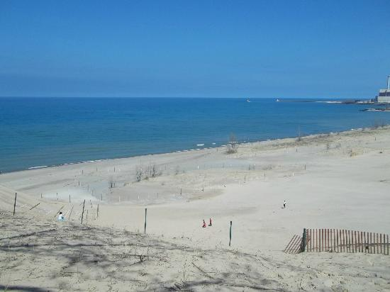 Indiana Dunes State Park From The Beach At Mt Baldy National Lakes