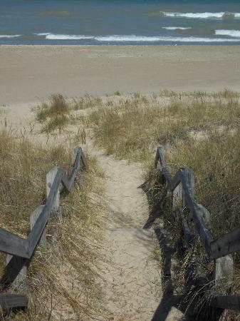 Indiana Dunes State Park: Beverly Shores Beach, Indiana Dunes