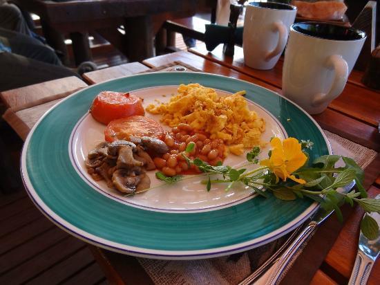 Dungbeetle River Lodge: Frühstück