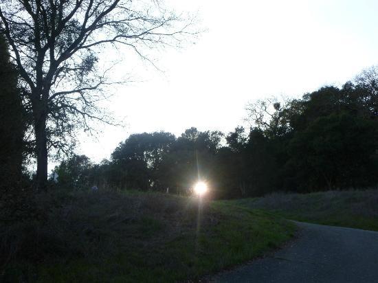 Lafayette Reservoir: sunset