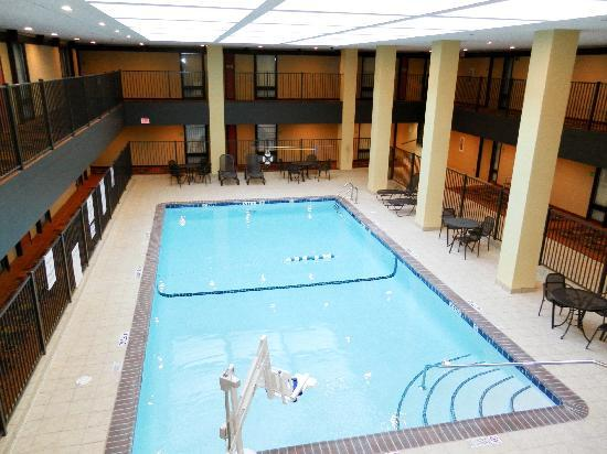 Holiday Inn Rochester Downtown: Pool