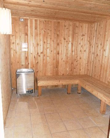 Holiday Inn Rochester Downtown: Sauna