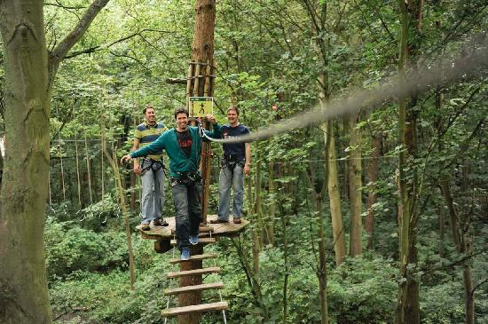 Go Ape Treetop Adventure Course: 38 Obstacles
