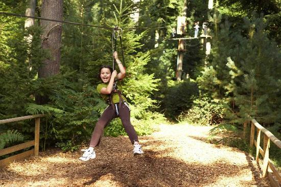 Go Ape Treetop Adventure Course: 2-3 Hour Adventure