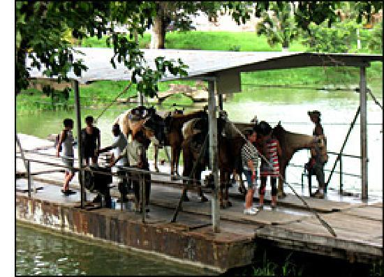 Yute Expeditions Day Tours: Ferry Crossing at Xunantunich