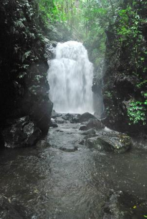 Lamington National Park: Boxlog Falls