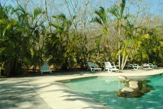 Sol y Luna Lodge: pool area
