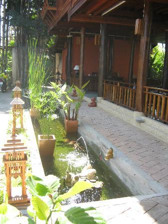 Ruen Come In: Reception area with Koi Pond