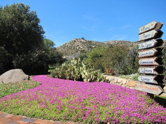 Rancho La Puerta Spa: Typical grounds at Rancho La Puerta.