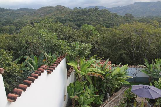 Terramaya: view from room