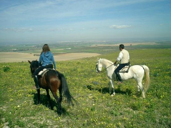 Europe Equitation: Andalusian countryside ride
