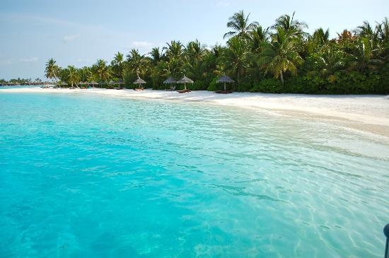 Anantara Dhigu Maldives Resort: View from jetty to our beach area.