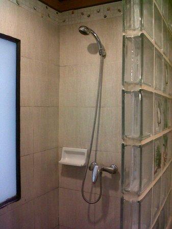 P. P. Palm Tree Resort: Shower-only bathroom