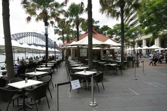 Sydney Cove Oyster Bar: Nice view of harbour bridge