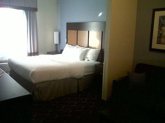 Comfort Inn & Suites I-10 Airport : King bed