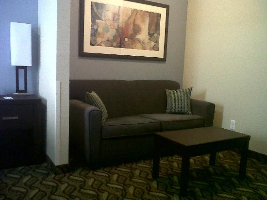 Comfort Inn & Suites I-10 Airport: Sitting area in suite