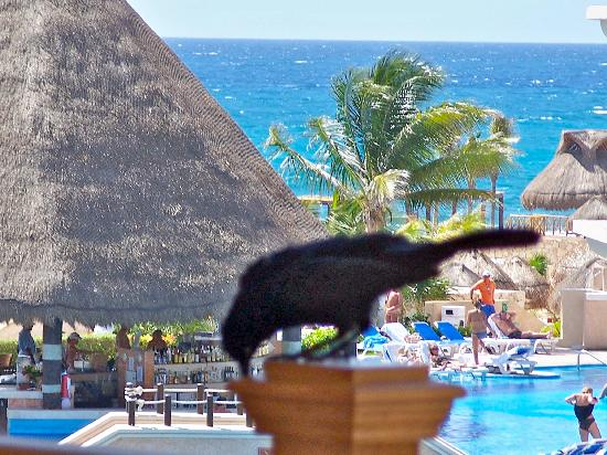 Heaven at the Hard Rock Hotel Riviera Maya 사진
