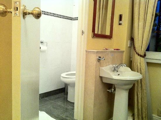 Lincoln House Hotel: Tiny toilet and sink in the room