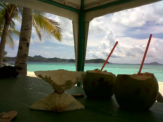 Malcapuya Island: Buko for 40 pesos each