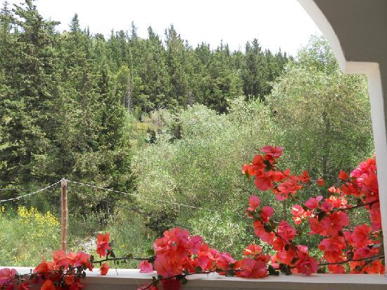 Anavra Studios : Balcony View