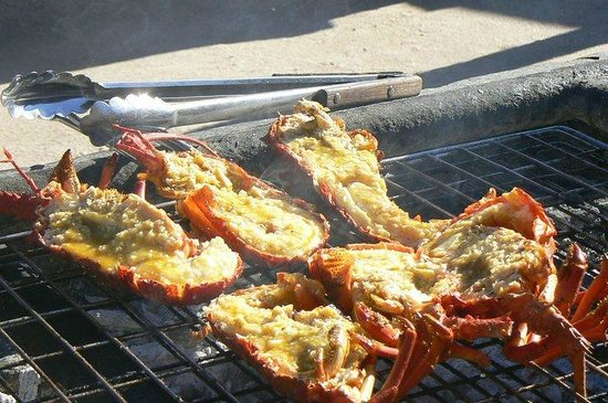 Lamberts Bay, South Africa: Crayfish on the braai