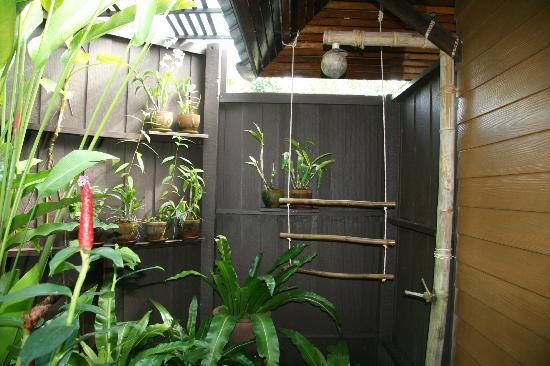 Shantaa Koh Kood : Gartendusche