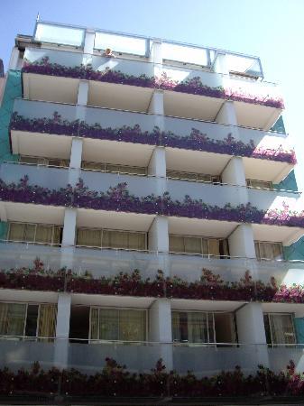 Foto De Hotel Oasis Plaza Benidorm Los Balcones Con Flores - Fotos-de-balcones-con-flores