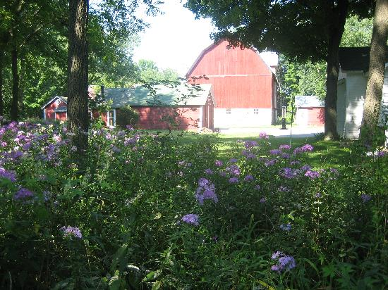 Crystal River Inn B&B, LLC: Barn and Backyard