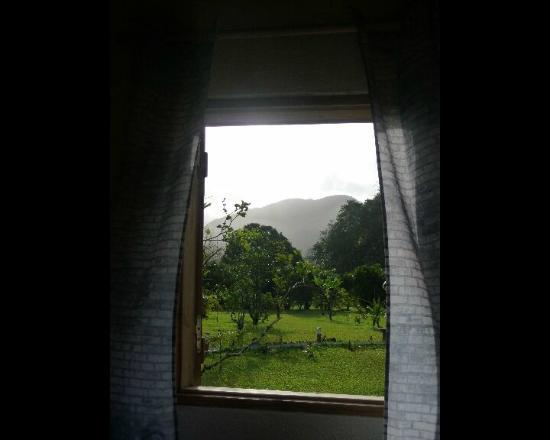 West Indies Cottage: Au petit matin...