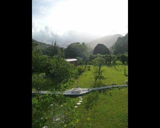 West Indies Cottage: ouverture des volets