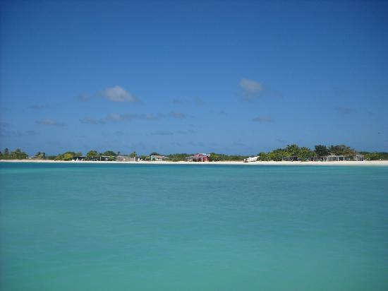 Posada Movida: mare e spiaggia