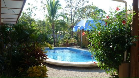 El Colibri Cabinas: piscina