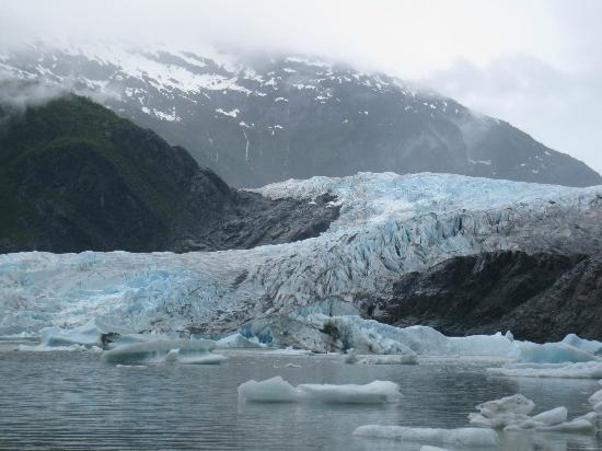 Mendenhall Glacier Visitor Center 사진