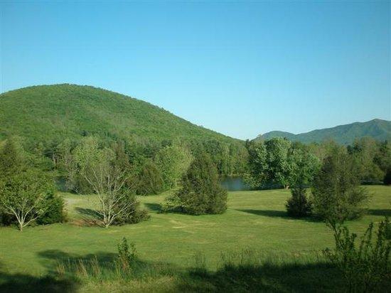 Lake Eden Events & Lodging: Eden Field