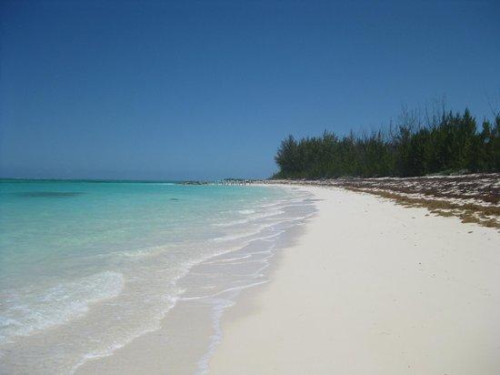 North Caicos : Pumkin Bluff