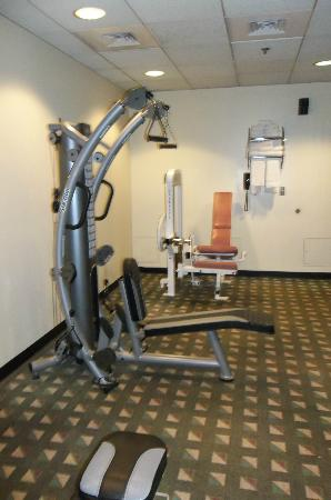 Two Trees Inn: fitness Room