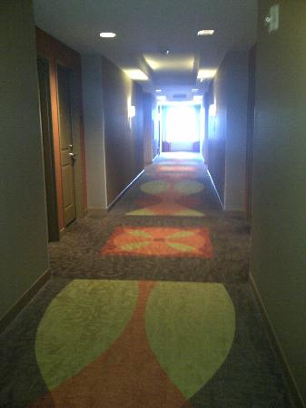 Embassy Suites by Hilton Houston - Energy Corridor: Hallway