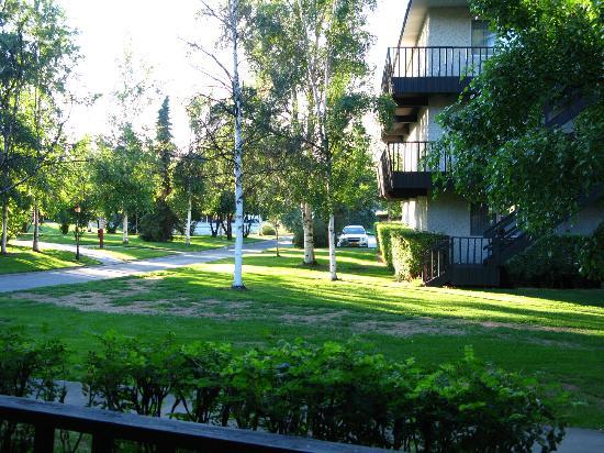ويدجوود ريزورت: Summer view out first floor apartment facing a courtyard