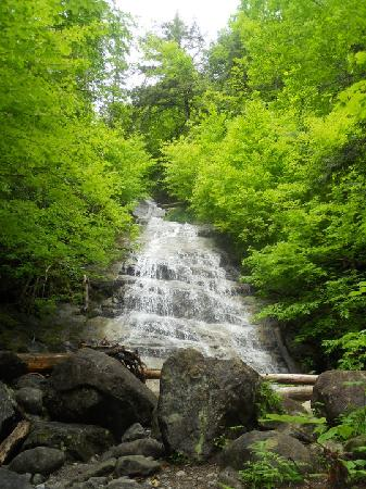 Snow Goose Bed and Breakfast: Waterfall hike from our back yard