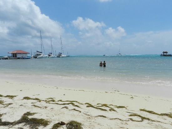 Ramon's Village Resort: the beach