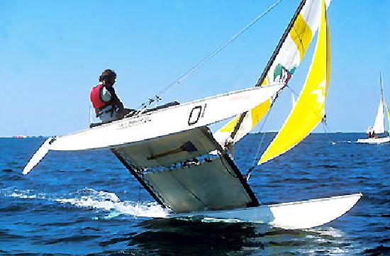 Sailing World Inc. Hobie 16 Sailboat