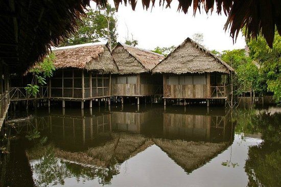 Amazonia Expeditions' Tahuayo Lodge: During the wet season