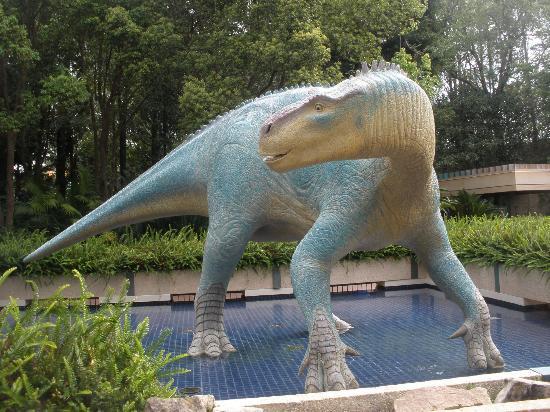 Dinoland Picture Of Disney S Animal Kingdom Orlando