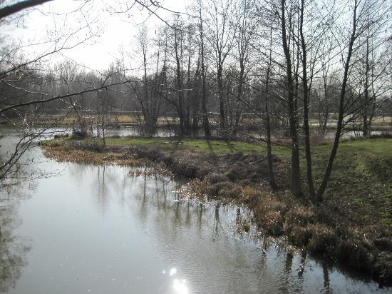 Ferienhaus im Spreewald: Ansicht im Park um die Ecke