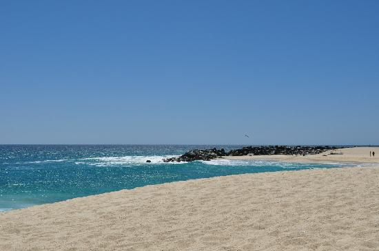Hilton Los Cabos Beach & Golf Resort: Beach, early morning
