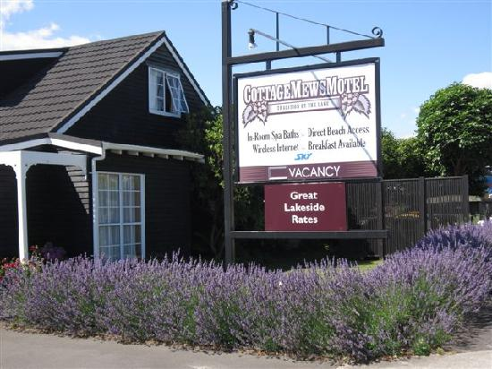The Cottage Mews Motel Taupo: Summer lavender