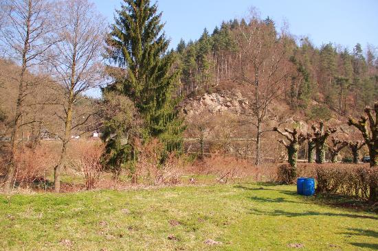 Waldhotel Forellenhof: wald