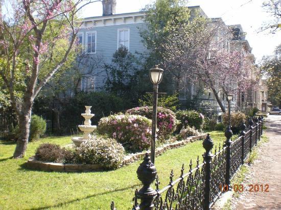 إقامة وإفطار بفندق روسيلز جاردين: The beautiful garden