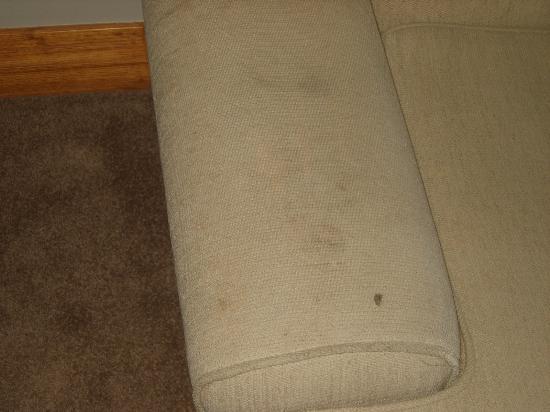Metro Suites: Propreté du sofa à revoir